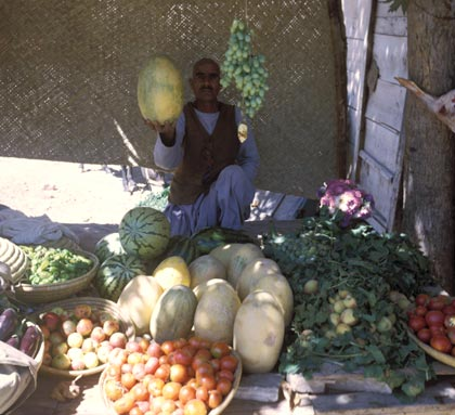 Fruit Seller in Afghanistan (Used by permission of AGS Library (One-time use.)