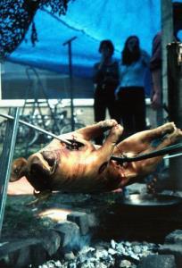 Grilling Pig on a Spit