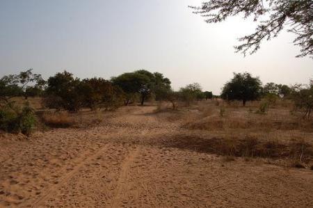 Africa, West