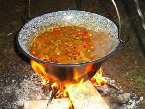 Hungarian Goulash (Used with permission.)