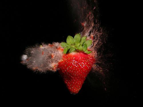 The Amazing Exoloding Strawberry! (Used with permission.)