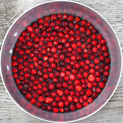 Cranberries Soaking (Used with permission.)