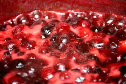 """Cranberries """"Boyling"""" (Used with permission.)"""