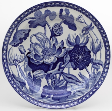 darwin-water-lily-pattern