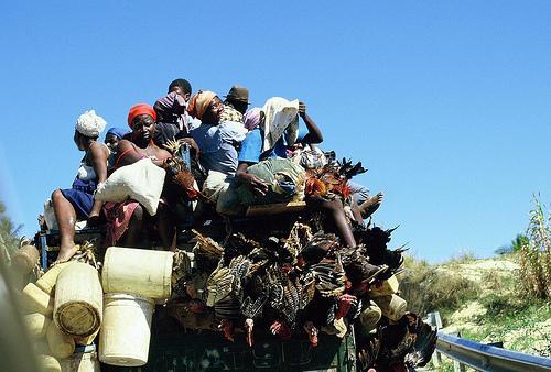 http://cbertel.files.wordpress.com/2009/01/haiti-market-2.jpg
