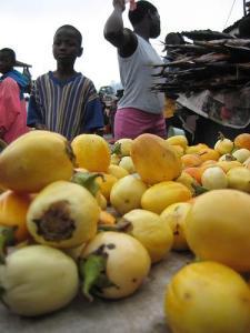 eggplant-yellow-africa