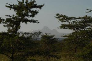 Mount Kenya (Photo credit: Martin Sharman)
