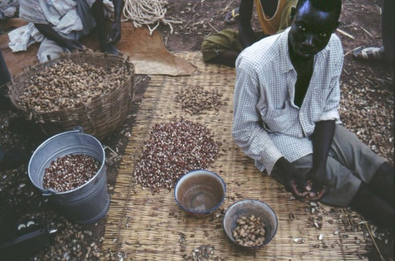 Selling groundnuts.