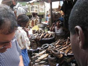 Africa smoked fish