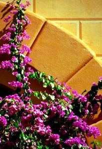 Monastic Gardens 14