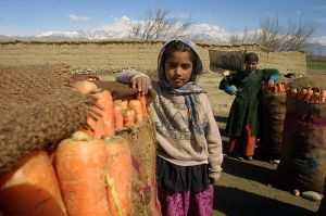 Children with Carrots in Afghanistan