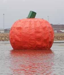 Pumpkin big
