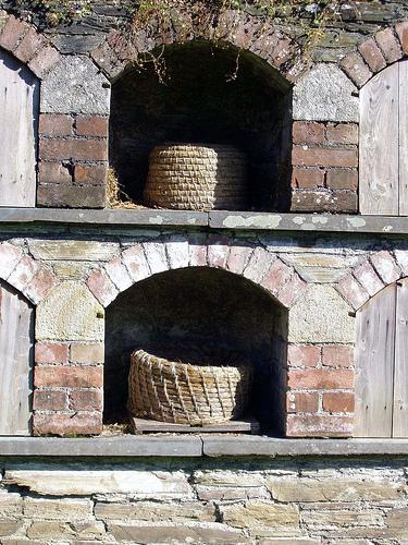 Bee Boles, Cornwall
