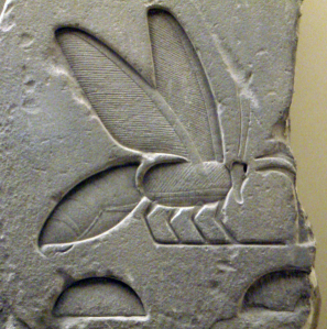 More Bees in Egyptian Hieroglyphs