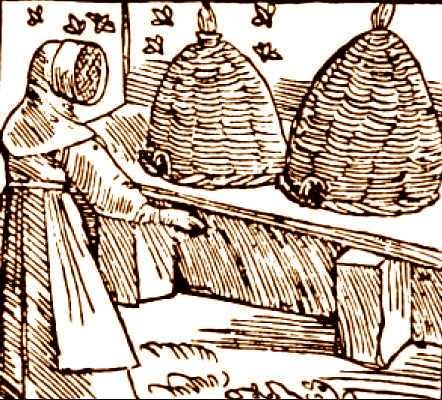 Medieval Beekeeper, by Sebastian Munster