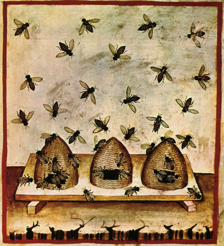 BeesTaccuino_Sanitatis,_Casanatense