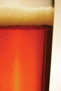 Costmary Ale glass