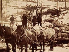 Logging in 1912, Minnesota