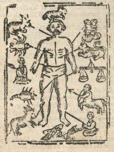 Medieval medicine Aristotle