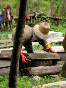 Traditional Honey Making (Photo credit: Philippe Semanaz)