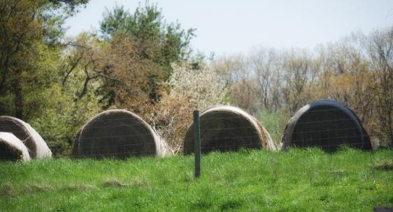 Haystacks: April 25, 2013