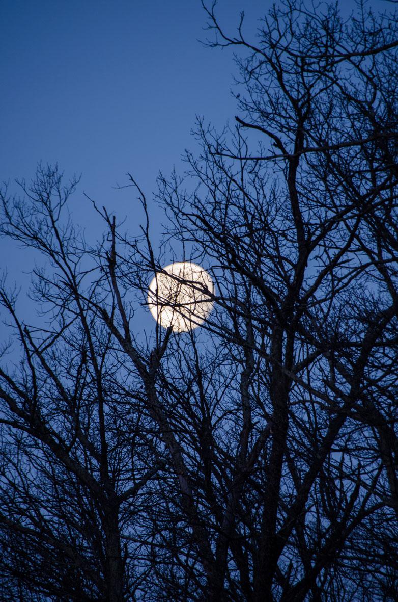 Full moon resized