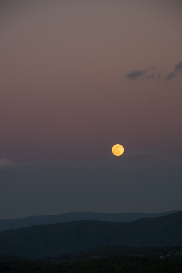 Moonstruck 2 rs