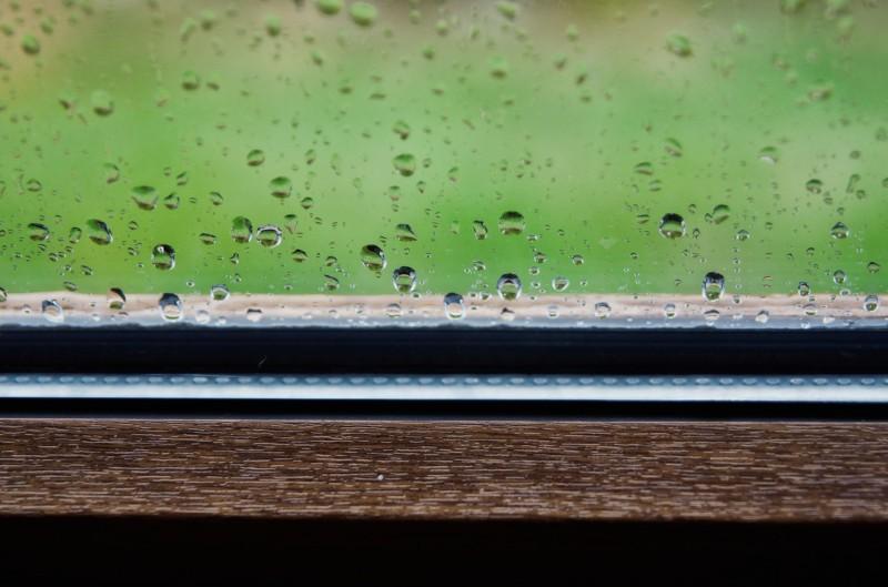 Rain resized