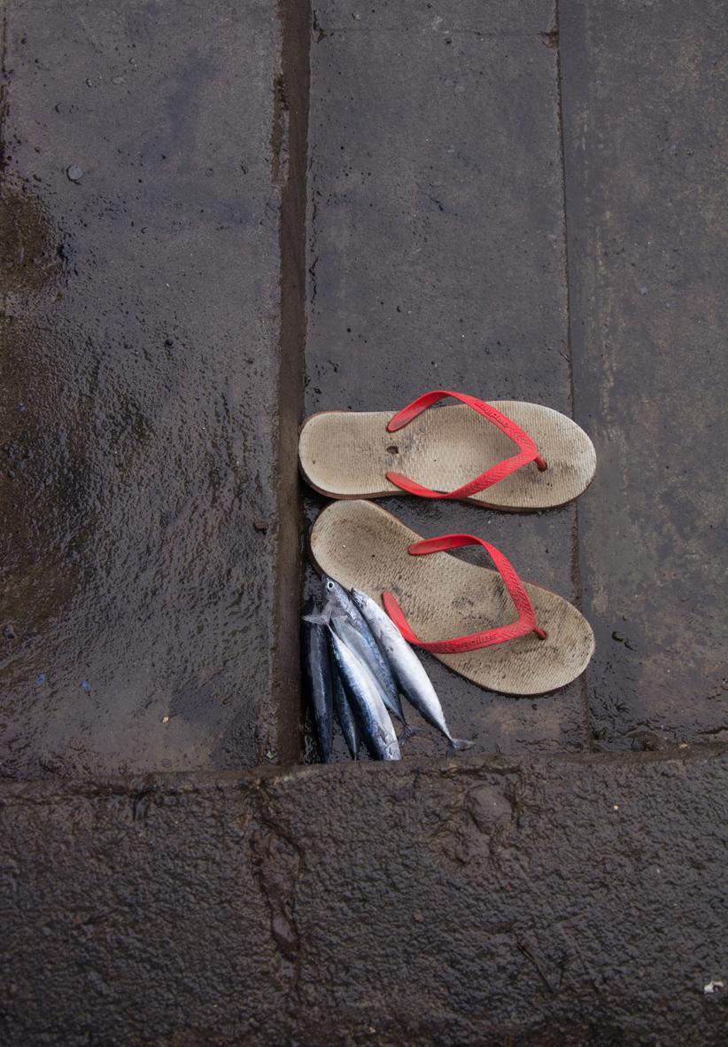Manado fish market shoes rs