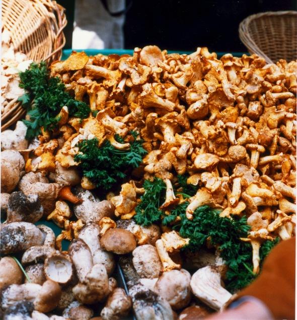 Mushroom 2 France
