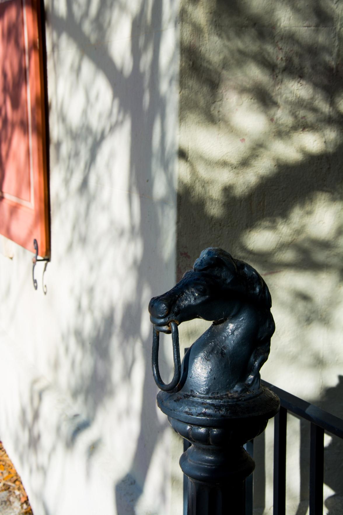 Hitching horse post Charleston