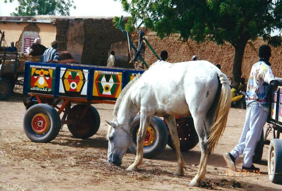 Africa village scene horse cart