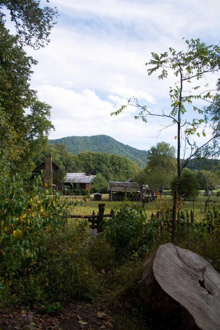 Farm museum GSM