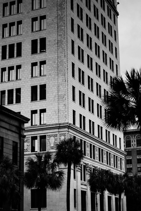 Savannah architecture BW rs