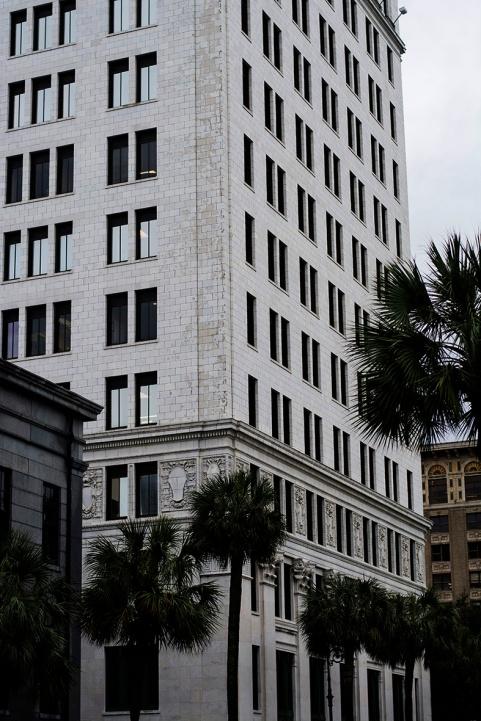 Savannah architecture color rs