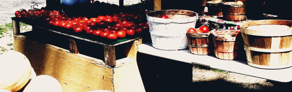 tomatoes-and-tomato-gravy-cropped-3-dark-contrasts rs 2